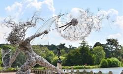 Sculptures de fil de fer par Robin Wight