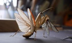 Insectes en bambou par Noriyuki Saitoh