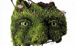 Sculptures végétales par Emeric Chantier