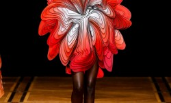 Robe imprimée 3D d'Iris Van Herpen